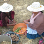 D-N en Cochabamba